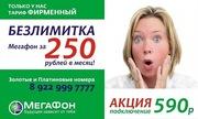 БЕЗЛИМИТКА Мегафон за 250р. в месяц!