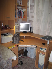стол компьютерный (угловой)