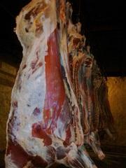 Продам говядину оптом,  мясо говядины в полутушах,  говядина 1 категории