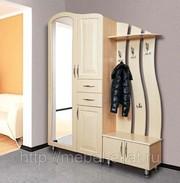 Набор мебели для прихожей Визит-7 АС-М