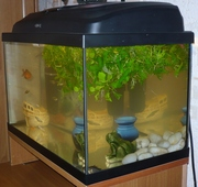 Продается аквариум на 45 литров