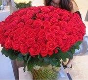 Цветы. Доставка роз