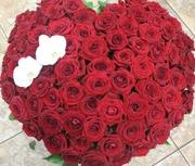 Букет из 101 розы ( длина стебля 50 см).