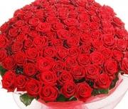 Любимый (151 роза 60см )