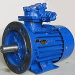 Электродвигатель  55кВт  3000  АВ225М2У2, 5 (IM2081)