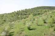 Продам земельный участок,  частная собственность,  площадь 170соток