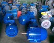 Электродвигатель 75 х 3000 5АМ250S2