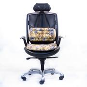 Сидения и опора для поясницы Phito-Seat