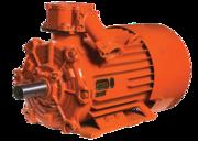 Электродвигатель 160кВт  1000 ВАО2-315М6У2, 5